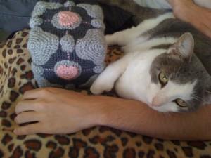 Cube + Cat